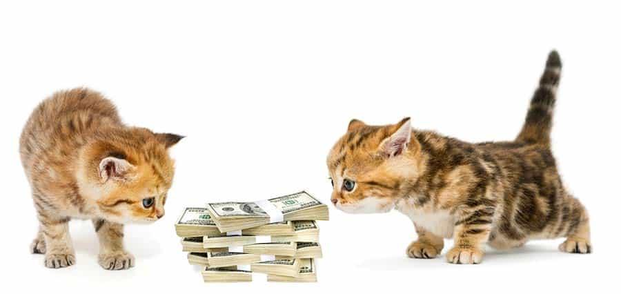 teenagers budgeting